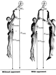 Física del tiro